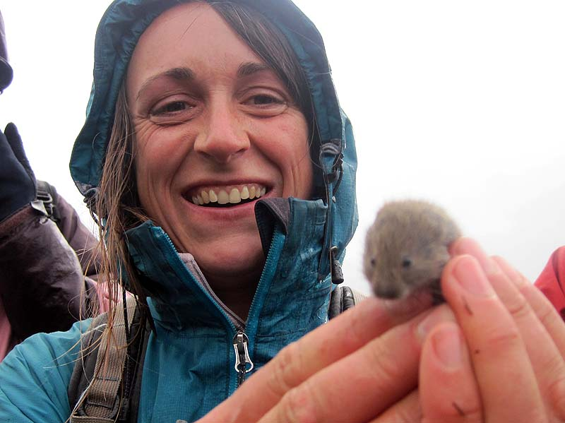 Laura Meets a Scottish Field Mouse