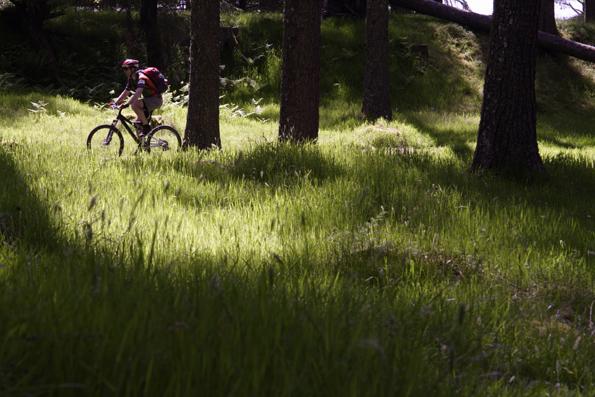 Top 5 mountain biking tips