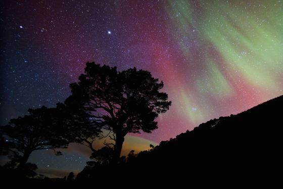 Northern Lights Scotland See The Aurora Borealis