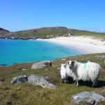 Mountain-Biking-Hebridean-Trail-Gallery-028
