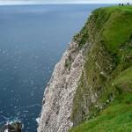 shetland-wildlife-walking-10