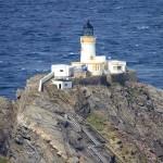 shetland-wildlife-walking-12