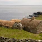 shetland-wildlife-walking-8