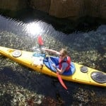 Family Sea Kayaking – Sound of Arisaig