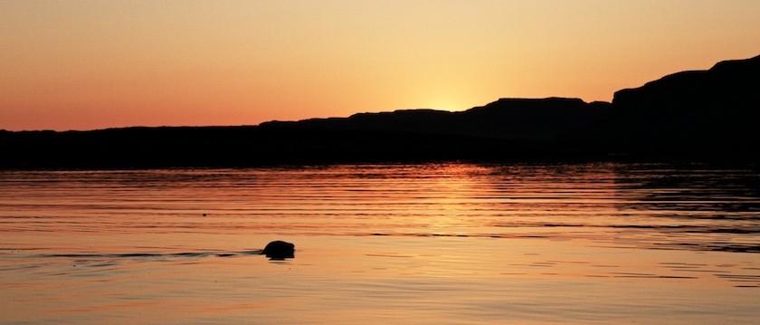 Inner Hebrides and Skye