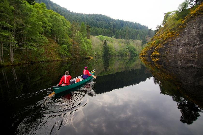 Our Favourite Wild Photos of Scotland