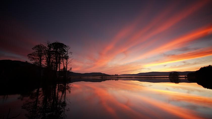 Our Favourite Wild Photos of Scotland 1330
