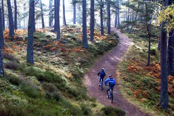 7 THINGS TO DO IN THE CAIRNGORMS