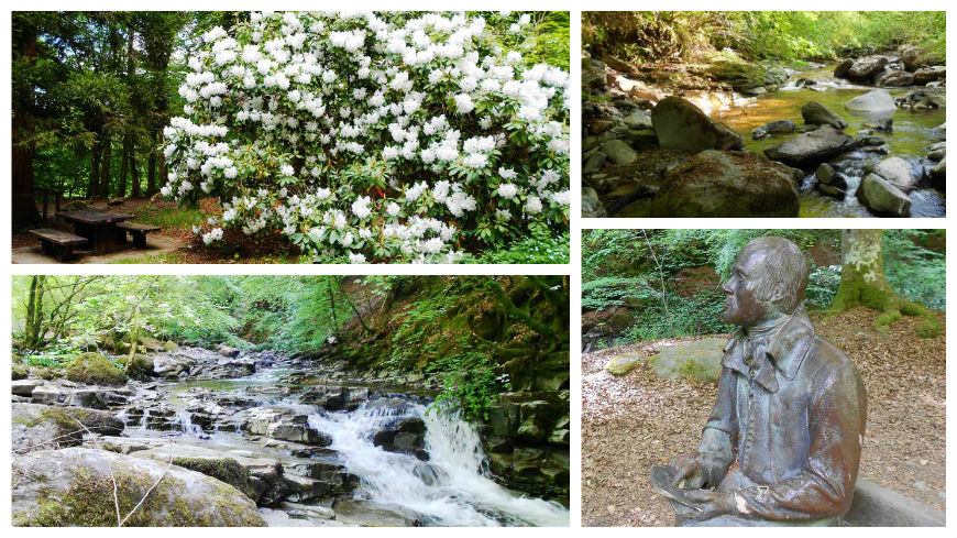walks in Highland Perthshire - the birks of aberfeldy