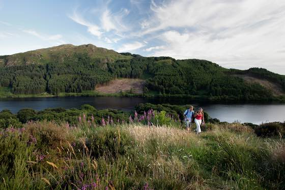 top-5-things-to-do-in-dumfries-and-galloway