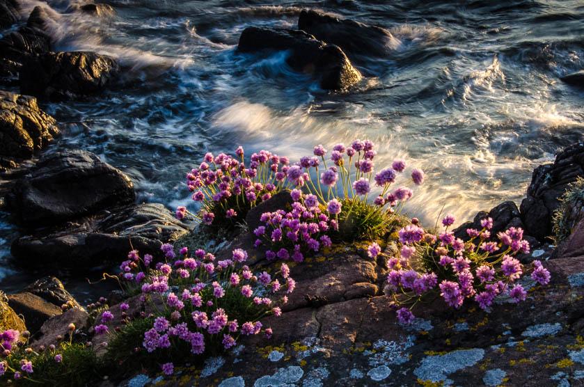 landscape photography scotland david russell 2