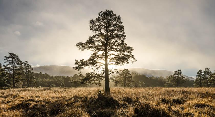 landscape photography scotland david russell