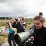 wildlife holiday mull, staffa, iona-25